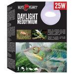 Žárovka REPTI PLANET Daylight Neodymium
