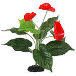 Rostlina REPTI PLANET kvetoucí Anthurium 40 cm 1ks