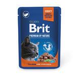 Brit Premium Cat Pouches Salmon for Sterilised 100g