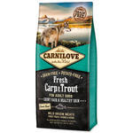 CARNILOVE Fresh Carp & Trout Shiny Hair & Healthy Skin for Adult dogs