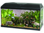 Akvárium set CAT-GATO Pacific 60 x 30 x 30 cm !! POUZE OSOBNÍ ODBĚR !! 54l