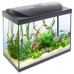Akvárium set TETRA Starter Line LED 61 x 32 x 51 cm !!! POUZE OSOBNÍ ODBĚR !!! 80l