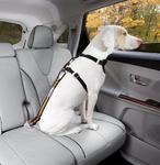 Kurgo Bezpečnostní autopás pro psa s upínacím mechanismem Direct to Seatbelt Tether