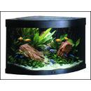 Akvárium set JUWEL Trigon 190 černé !! POUZE OSOBNÍ ODBĚR !! 190l
