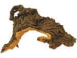 Dekorace HOBBY DOHSE Tropical wood S 24 cm