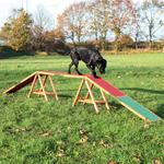 Kladina TRIXIE Dog Activity Agility 456 x 64 x 30 cm 1ks