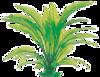 Plastové rostliny