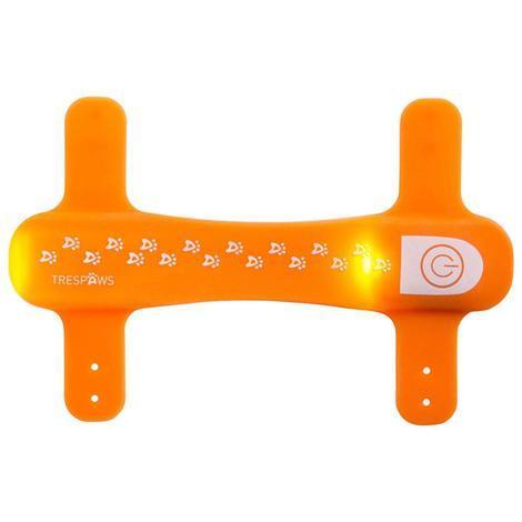 DISCO DOG - LED DOG COLLAR - 1