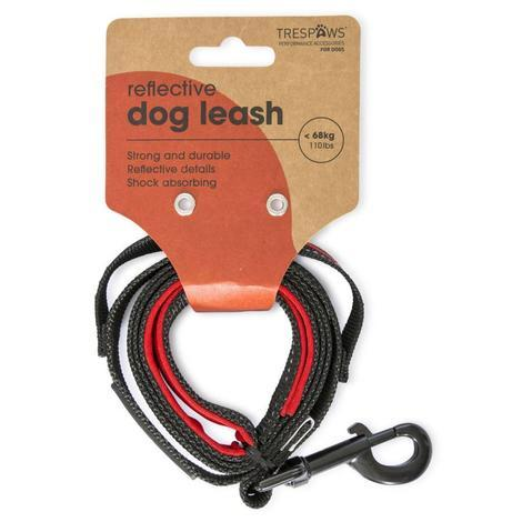 BUSTER -  DOG LEAD - 1