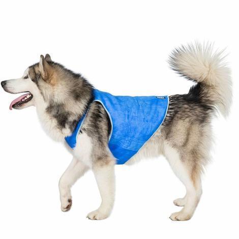 ALASKA - DOG COOLING VEST - 1