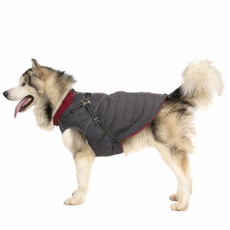 HERCULES - 2 IN 1 DOG JKT WITH HARNESS - 1