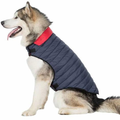KIMMI X - QUILTED DOG JACKET - 1