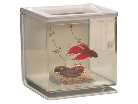 Akvárium MARINA Betta Kit Contemporary 2l