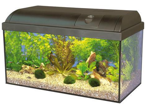 Akvárium set MARINA Basic !! POUZE OSOBNÍ ODBĚR !! 54l