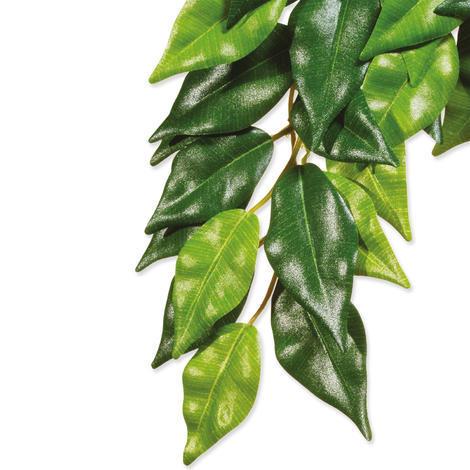 Rostlina EXO TERRA Ficus velká  70 cm