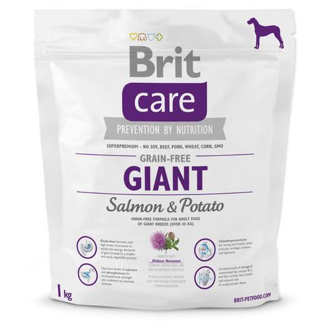 Granule BRIT Care Grain-Free Giant Salmon&Potato 1kg
