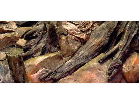 Pozadí AQUA EXCELENT Root 80 x 40 cm