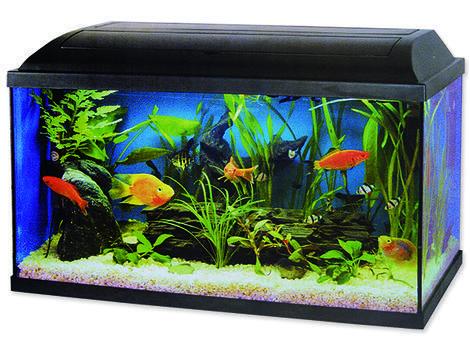 Akvárium set CAT-GATO Pacific 100 x 30 x 40 cm !! POUZE OSOBNÍ ODBĚR !! 120l