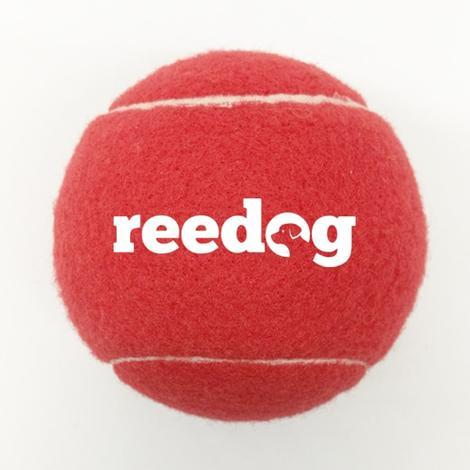 Reedog tenisový míček pro psa malý