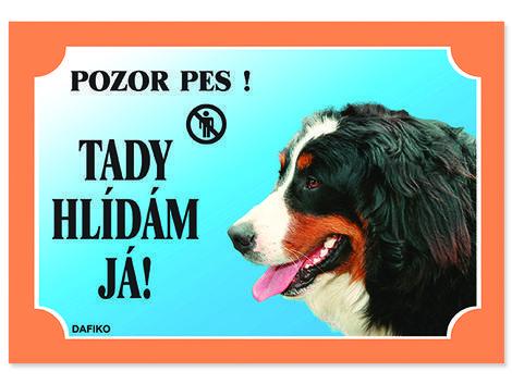 Tabulka DAFIKO bernský salašnický pes 21 x 14,5 cm. cm