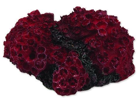 Dekorace AQUA EXCELLENT mořský korál červený 1ks