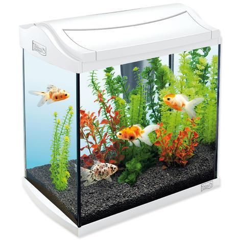 Akvárium set TETRA AquaArt bílý 35 x 25 x 35 cm !! POUZE OSOBNÍ ODBĚR !! 30l  - 1