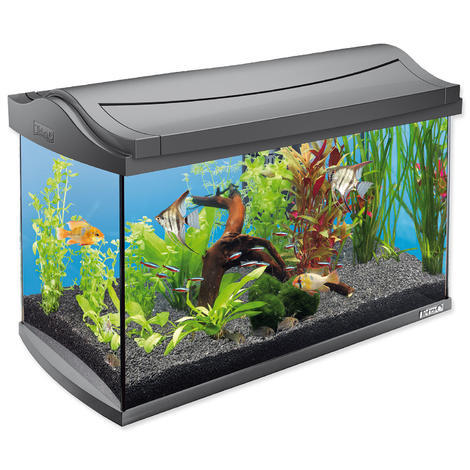 Akvárium set TETRA AquaArt LED !! POUZE OSOBNÍ ODBĚR !! 60l  - 1