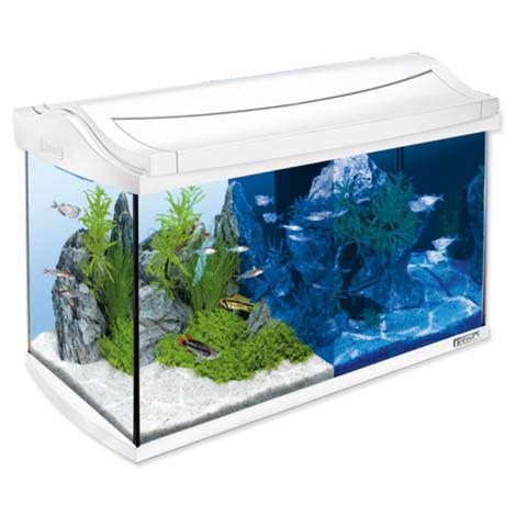 Akvárium set TETRA AquaArt LED bílý !! POUZE OSOBNÍ ODBĚR !! 60l  - 1