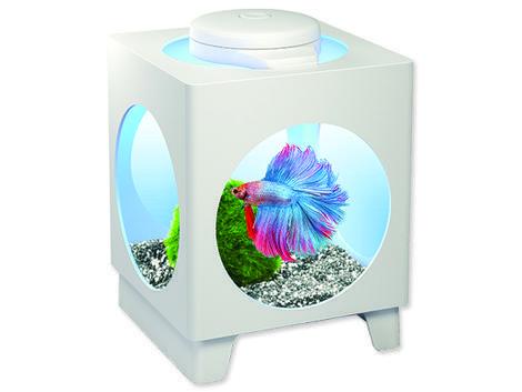 Akvárium set TETRA Betta Projector bílý 1,8l