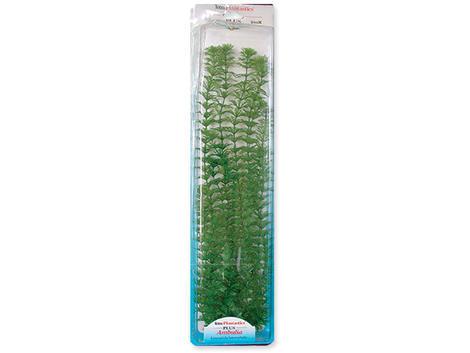 Rostlina TETRA Ambulia Plus  46 cm