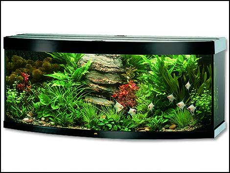 Akvárium set JUWEL Vision 450 černé !! POUZE OSOBNÍ ODBĚR !! 450l