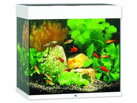 Akvárium set JUWEL Lido LED 120 bílé !!!POUZE OSOBNÍ ODBĚR!!! 120l