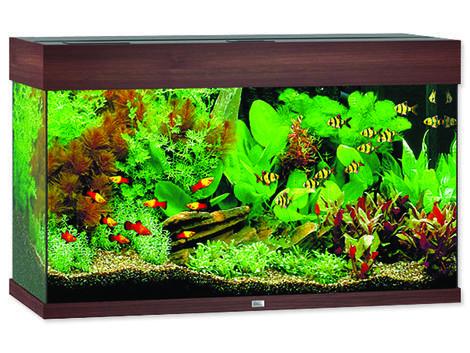 Akvárium set JUWEL Rio LED 125 tmavě hnědé !!!POUZE OSOBNÍ ODBĚR!!! 125l