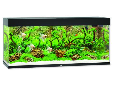 Akvárium set Juwel Rio LED 240 černé !!!POUZE OSOBNÍ ODBĚR!!! 240l
