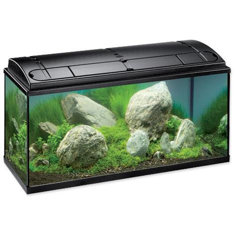 Akvárium set EHEIM Aquapro T5 černé !! POUZE OSOBNÍ ODBĚR !! 1ks