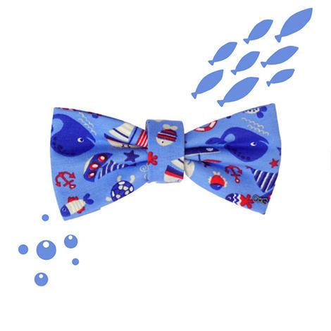 Motýlek mořský svět - 1