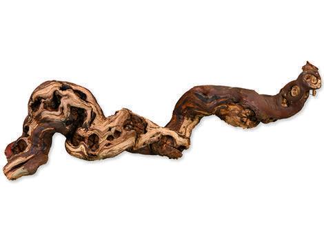 Dekorace TRIXIE kořeny M 5ks