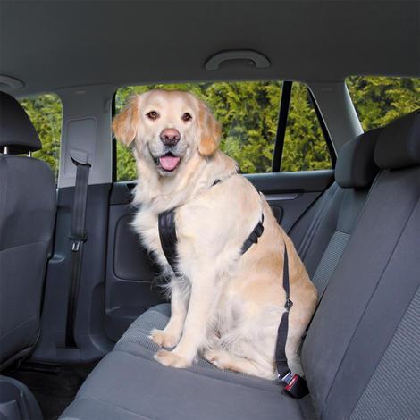 Postroj TRIXIE bezpečnostní do auta  M