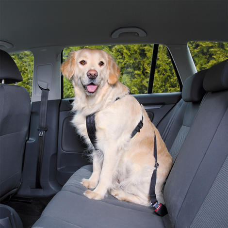 Postroj TRIXIE bezpečnostní do auta  XL