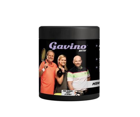 Gavino Aktiv MSM 700g