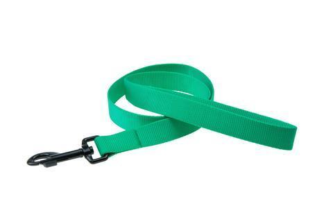 Karlie Vodítko ASP zelené velikost L/XL 100cm x 25mm