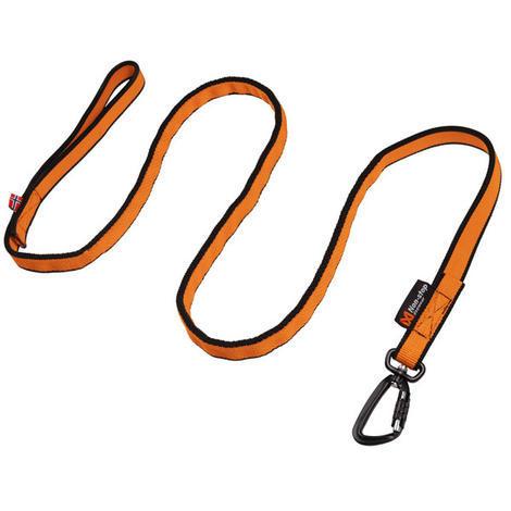 Bungee leash