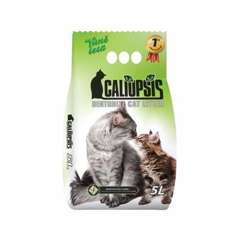 CALIOPSIS - vůně lesa 5l