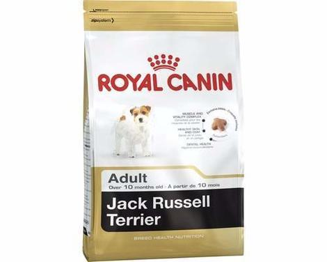 ROYAL CANIN BHN JACK RUSSELL ADULT