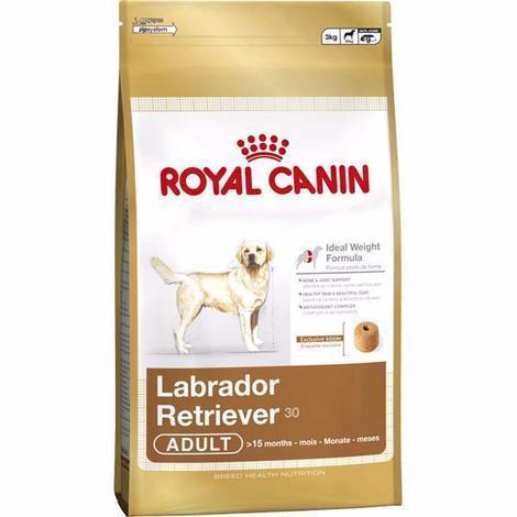ROYAL CANIN BHN LABRADOR ADULT