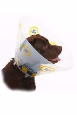 Límec ochranný BUSTER plastový Design Collar