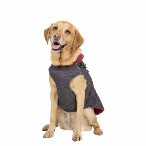 HERCULES - 2 IN 1 DOG JKT WITH HARNESS - 2
