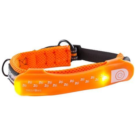 DISCO DOG - LED DOG COLLAR - 2