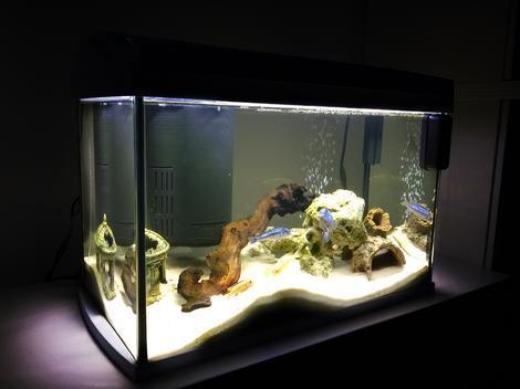 Akvárium set TETRA AquaArt bílý 35 x 25 x 35 cm !! POUZE OSOBNÍ ODBĚR !! 30l  - 2