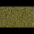 TETRA Phyll - 2/2